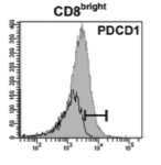 Fig.2 Flow cytometry of PDCD1-expressing T cell subpopulations in term peripheral blood and decidua.