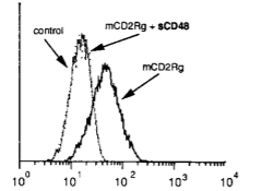 Fig.2 Inhibitory effects of a rat anti-mouse CD48 mAb.