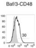 Fig.3 EM CD8+ T cells were used as effector cells in a 6-h chromium release assay against target cells (T) expressing human CD48.